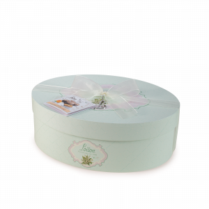Traditional Easter Colomba cake in hat box